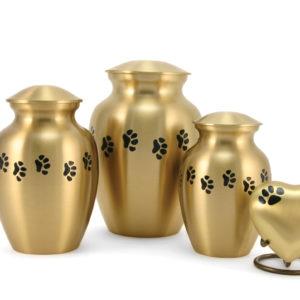 Bronze Paw Cremation Urns